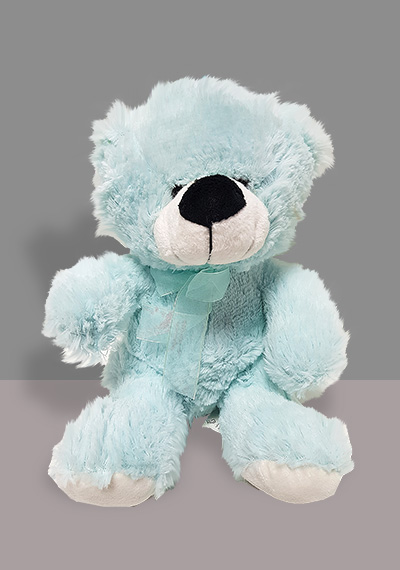 Blue For All Teddy