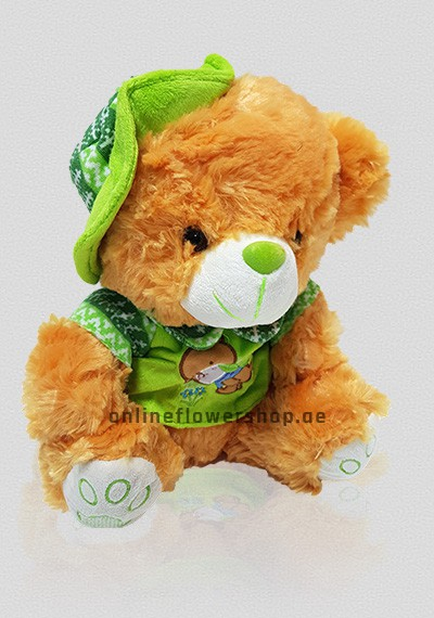 Kid GreenTeddy