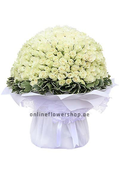 200 White Hand Tied